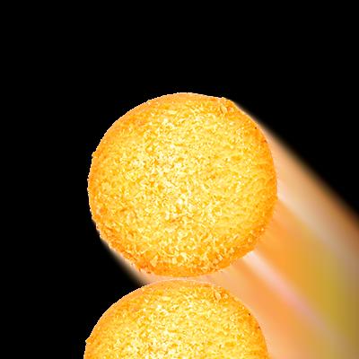 Coconut Biscuit (100gm)